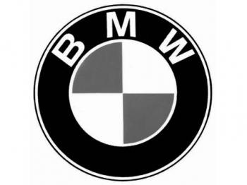 Пневмобаллон оригинальный задний BMW X6 E71 (Adaptive Drive) 2009-